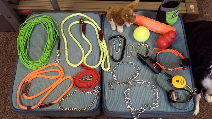 Obedience Collars For Dog Training